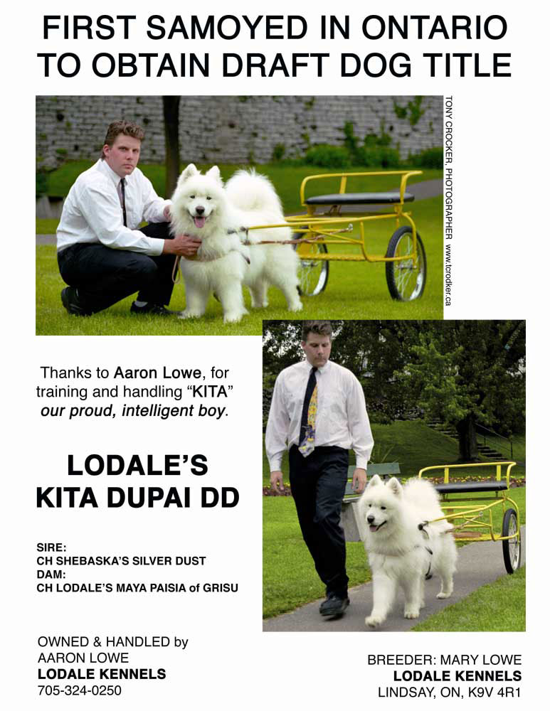 LODALE POSTER